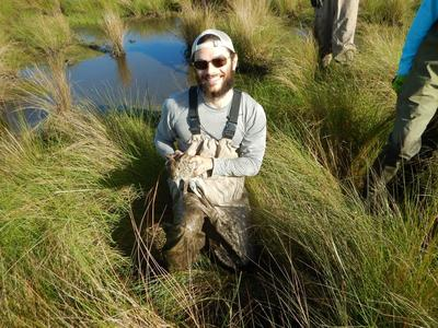 Adam Harald Quade, Field Assistant